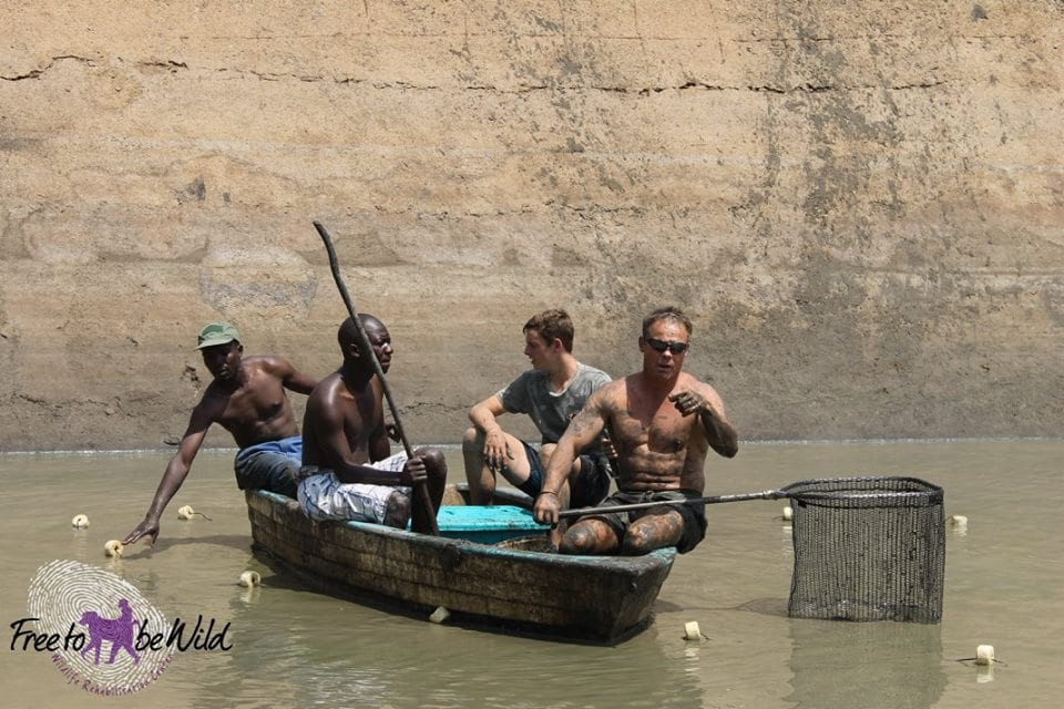Conservationist helps move fish from drought-hit Zim dams